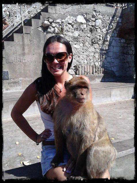 Gibraltar -Macaco